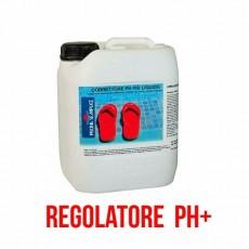 Correttore ph + per piscine regolatore pH Più
